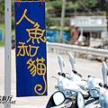 蘭嶼人魚和貓_呂昇祐拍37.jpg