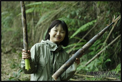 推廣講師新竹爬樹150.jpg