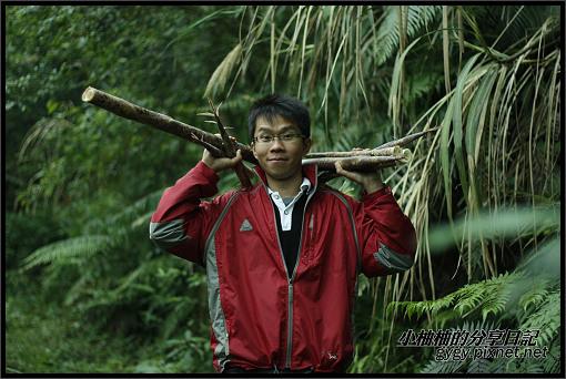 推廣講師新竹爬樹164.jpg