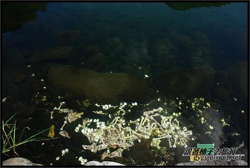 龜山島980912_318.jpg