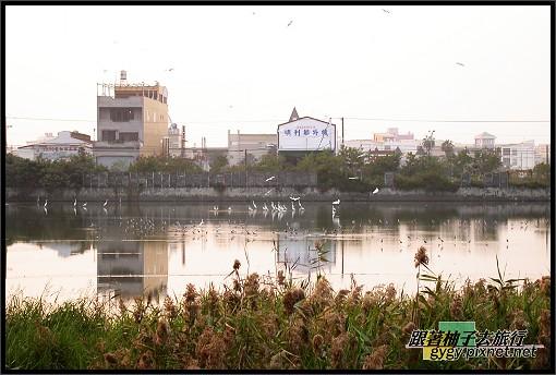 東港風景013.jpg