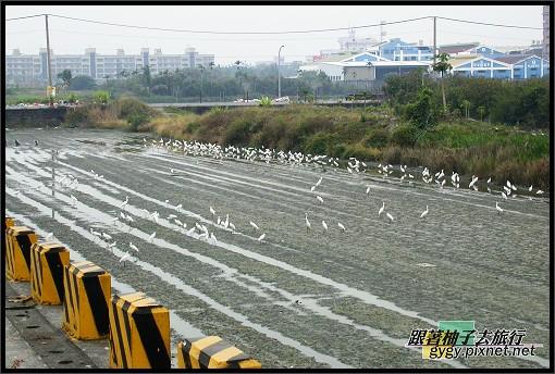 東港風景014.jpg