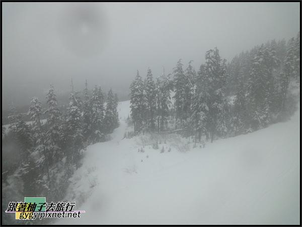 991208-10惠斯勒滑雪WX5拍_066.jpg
