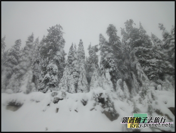 991129_溫哥華cypress滑雪_0002.jpg
