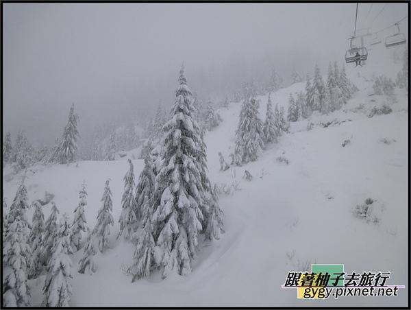 991129_溫哥華cypress滑雪_0039.jpg