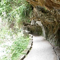 砂卡礑步道16