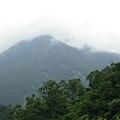 砂卡礑雲景