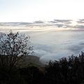 塔塔加中途雲海01