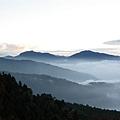 塔塔加中途雲海08