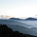 塔塔加中途雲海09