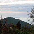 塔塔加中途雲海14