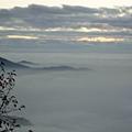 塔塔加中途雲海24