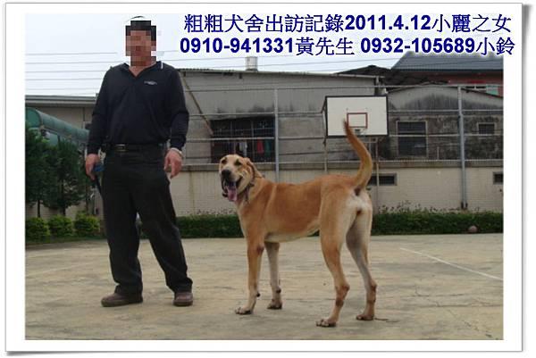 2011.04.12(U莉)(3.29丁丁)黑寶~霧峰江老闆~22.jpg