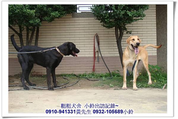2011.04.12(U莉)(3.29丁丁)黑寶~霧峰江老闆~23.jpg