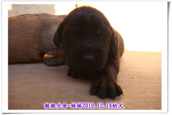 2010.12.14~11.jpg