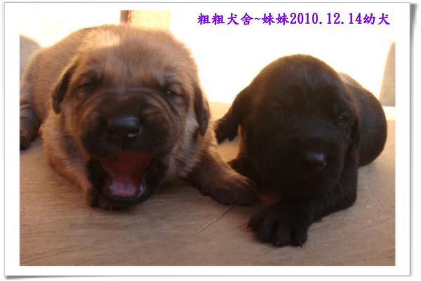2010.12.14~10.jpg