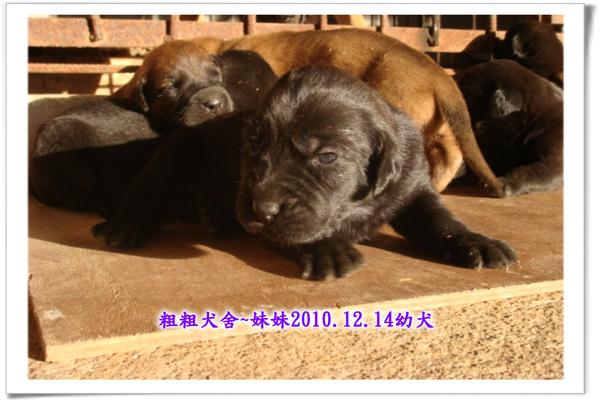 2010.12.14~07.jpg