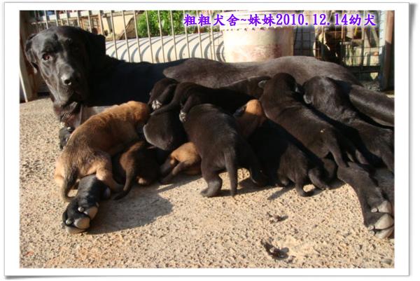2010.12.14~23.jpg