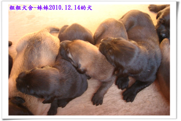 2010.12.14~31.jpg