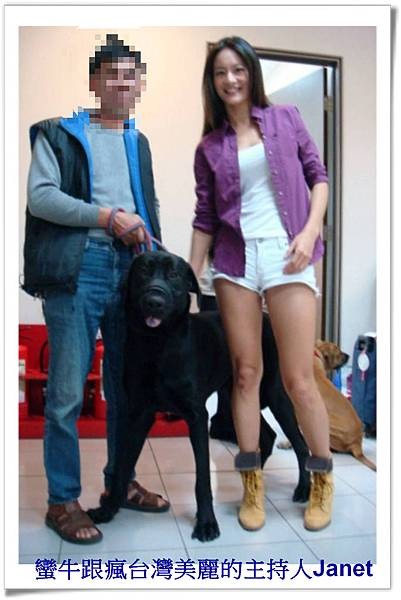 蠻牛一歲三個月在陶子藝言堂~粗粗犬舍~15.jpg