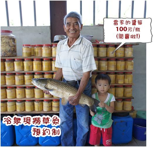 草魚-2.jpg