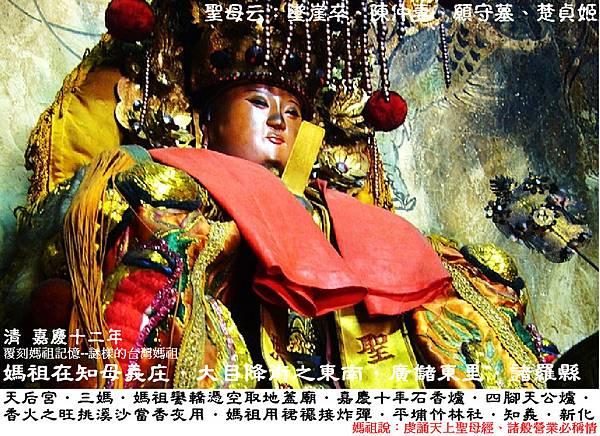台南新化知母義天后宮 (3)