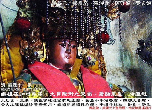 台南新化知母義天后宮 (4)