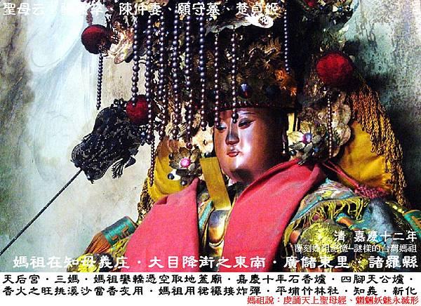 台南新化知母義天后宮 (5)