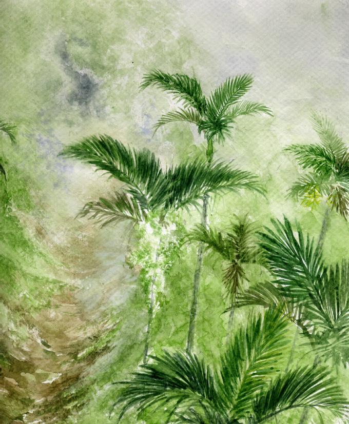 森林裡的幽魂-檳榔園2