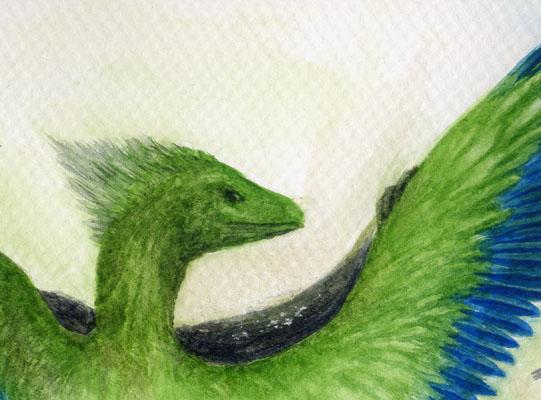 小盜龍Microraptor掃描器版3.jpg