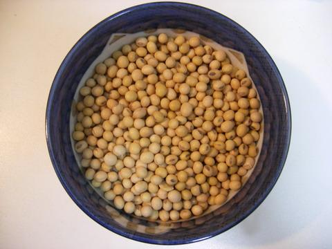 4.裝約一個中碗的3分之2黃豆.jpg