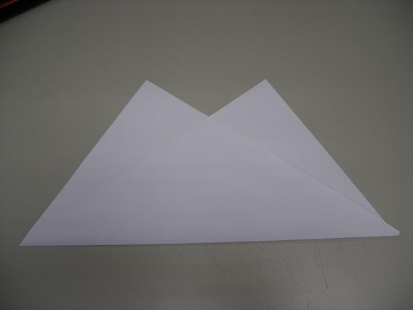 2從A4紙左下往上提摺,上三角頭要平行,中間空缺為倒三角空缺.jpg
