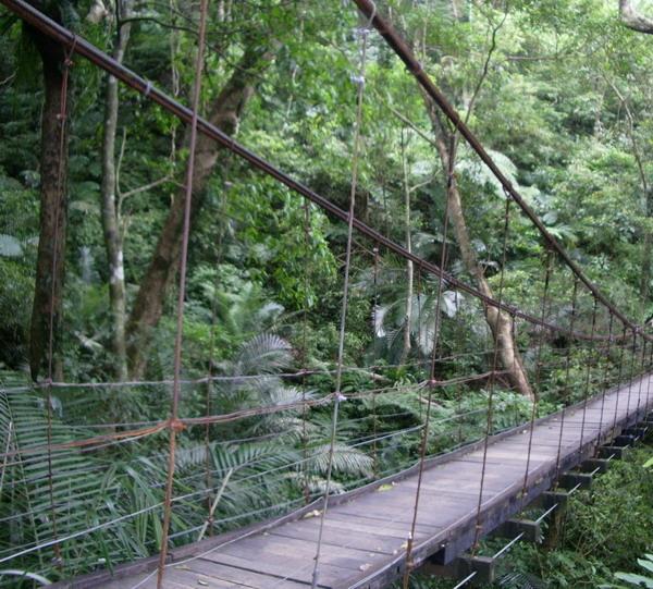 吊橋2.jpg