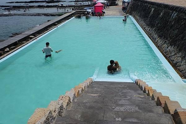 寵物泳池 (1).JPG