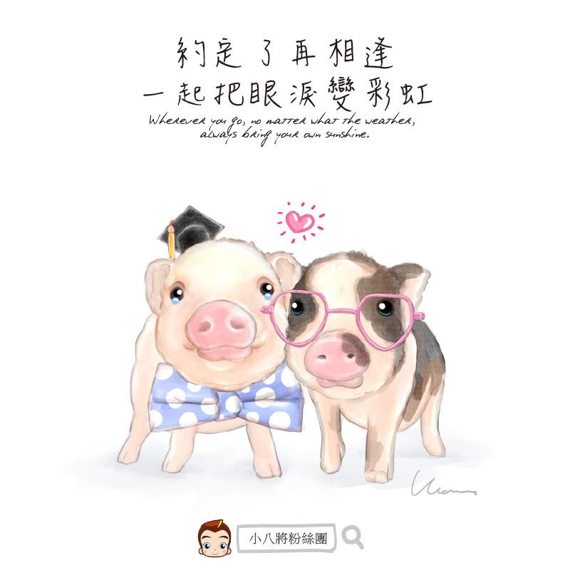 兩隻小豬 畢業季節