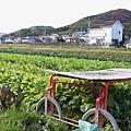 Komyoji_005.JPG