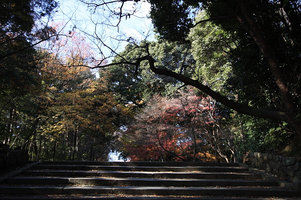 Komyoji_009.JPG