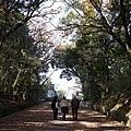 Komyoji_011.JPG