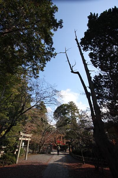 Komyoji_033.JPG