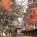 Komyoji_035.JPG