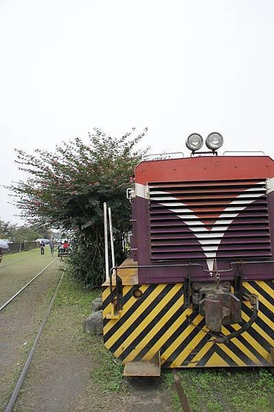 DSC01665.jpg
