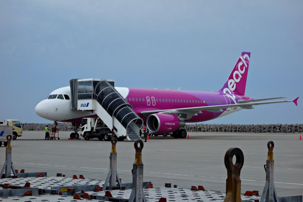 2015年樂桃飛往沖繩