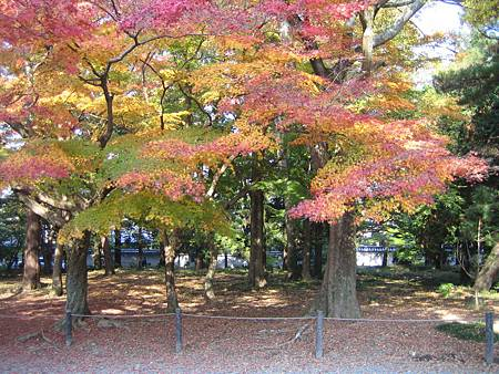 Kyoto_11_2004_IMG_0156 (79)