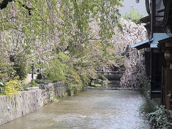 KyoTo_Japan_04_2005_MOV00397 (3)