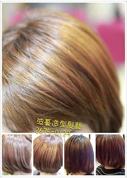 5~6度的自然染髮