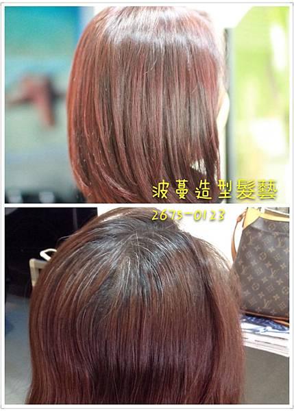 白髮適合染淺色系的顏色嗎?