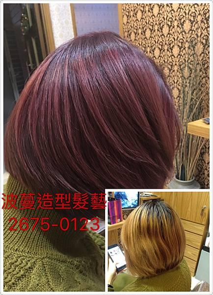 紫帶紅的溫暖色系