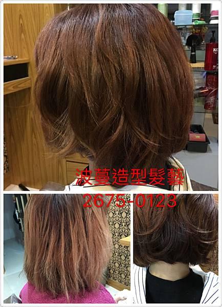搶救頭髮大作戰