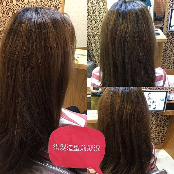 染髮前髮況,乾燥偏黃