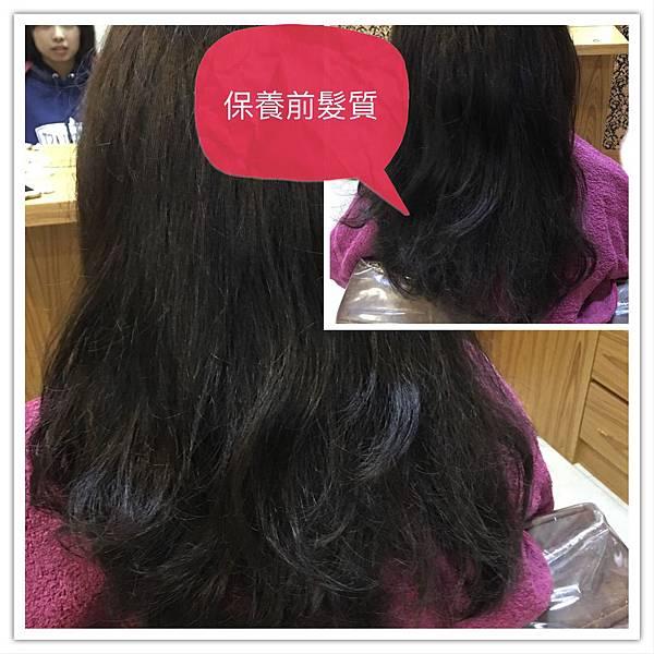 護髮前髮況